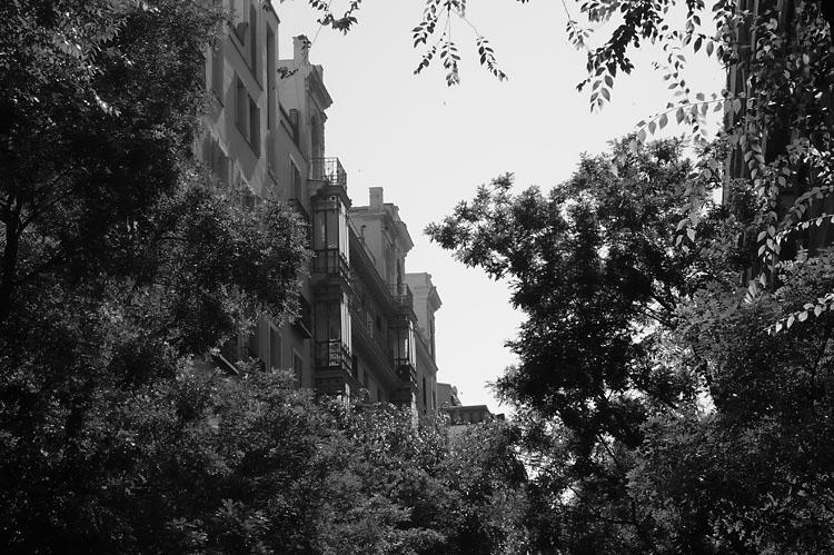 Calle de Hermosilla. Madrid2007