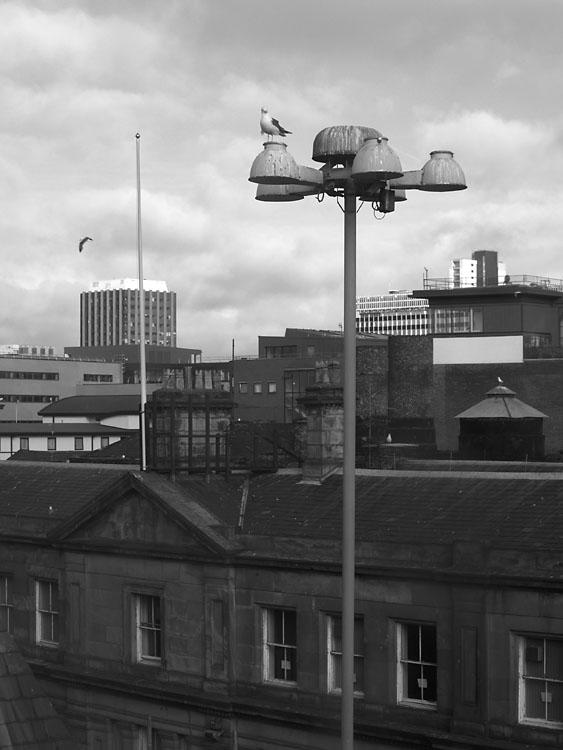 Desde la habitacion del hotel. Liverpool 2005