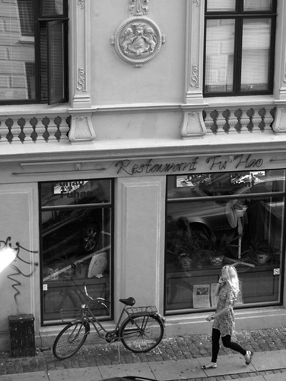 Restaurant Fu Hao. Copenhague 2007