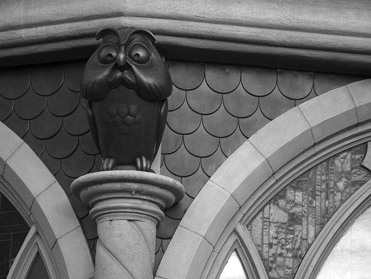 Buho. Disneyland2007